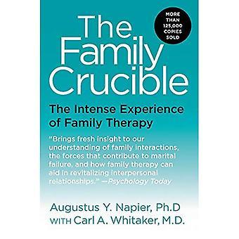 Familjen Crucible, den: en intensiv upplevelse av Family Therapy