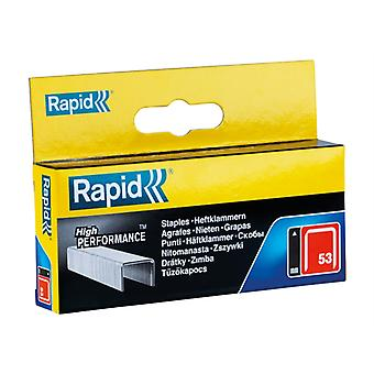 Rapid 53/14B 14mm Galvaniseerde Staples Box 2500 RPD5314B2500