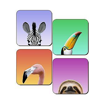 Inquisitive Creatures Wild Coaster Set (Pack of 4)