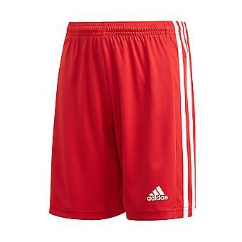 Adidas JR Squadra 21 GN5761   boy trousers
