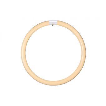 Inspiracja T8 Circline 40W ciepły biały rura okrągła