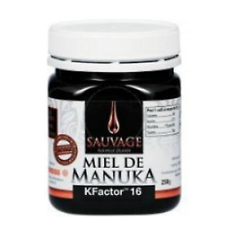 Wild manuka honey kfactor12 r 250 ml
