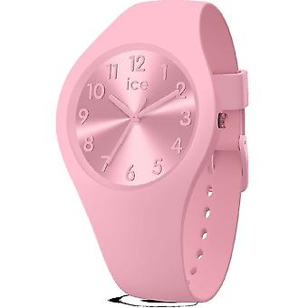 Ice Watch - Wristwatch - Ladies - ICE color - Ballerina - Small - 3H - 017915