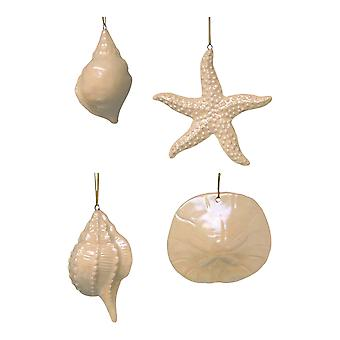 Beachcombers Pearlize Iridescent Seashell Holiday Ornaments Glass Cream Set of 4