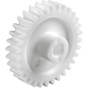 Polyoxymethylene Spur gear Reely modultype: 0,5 bar diameter: 6 mm nr. af tænder: 70