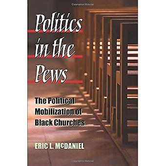Politik in den Kirchenbänken: die politische Mobilisierung der schwarzen Kirchen (Politik der Rasse & Ethnizität)
