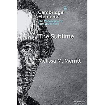 Il Sublime (elementi della filosofia di Immanuel Kant)