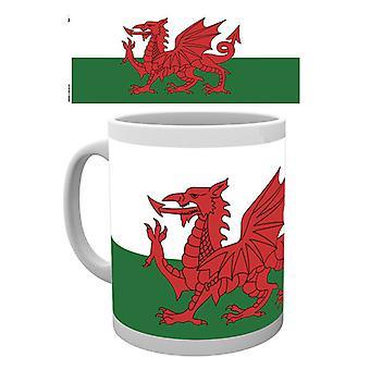 Wales Flag Boxed Drinking Mug