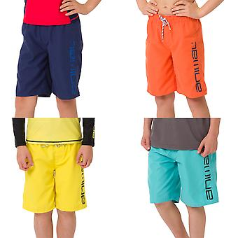 Animal Boys Kids Tannar Holiday Beach Pool Swimwear Swimming Boardshorts Shorts