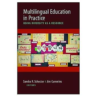 Multilingual Education in Practice: Strategies for Teaching and Learning