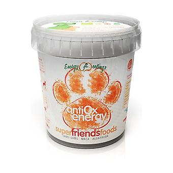 Super Friend Foods Energy Antiox Eco (For Dogs) 500 g