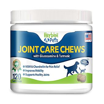 Herbion Pets Joint Care Chews with Glucosamine & Turmeric, 120 Soft Chews - (Pack of 2)