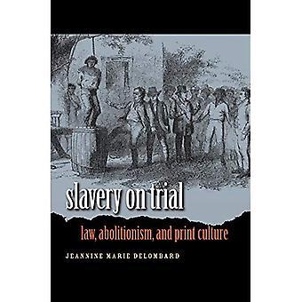Sklaverei auf dem Prüfstand: Recht, Abolitionismus und Druckkultur (Studies in Rechtsgeschichte)