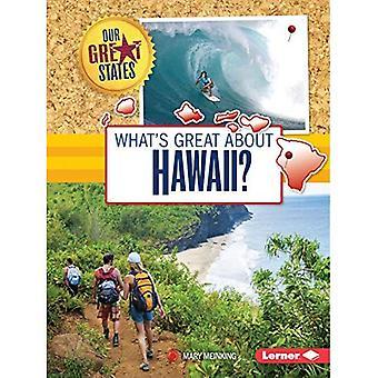 Ce qui est formidable à propos de Hawaii? (Nos grands États)