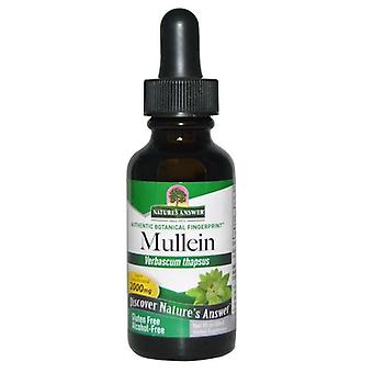 Nature's Answer Mullein Leaf 30ml 1374