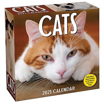 Cats 2021 DaytoDay Calendar by Andrews McMeel Publishing