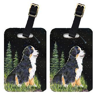 كارولين SS8468BT كنوز ليلة النجوم بيرن الجبلية الكلب الأمتعة والعلامات بأي
