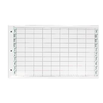 Agenda Salon Concepts Loose Leaf Refill 9 Coloumn 100 Sheets