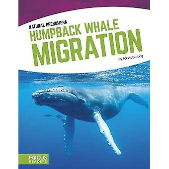 Natural Phenomena - Humpback Whale Migration by Alexis Burling - 97816