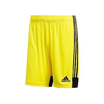 Adidas Tastigo 19 DP3249 futbal po celý rok muži nohavice