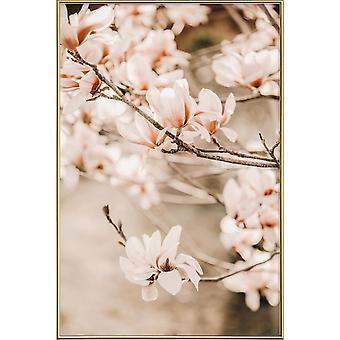 JUNIQE Print - Magnolias 1 - Blommor Affisch i Brunt & Cream White