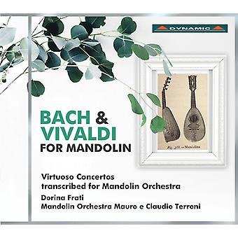 Bach, J.S. / Vivaldi / Frati / Tenchini - Bach & Vivaldi for Mandolin [CD] USA import