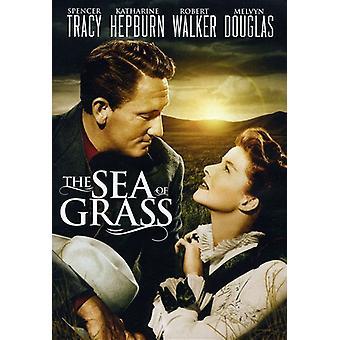 Sea of Grass [DVD] USA import