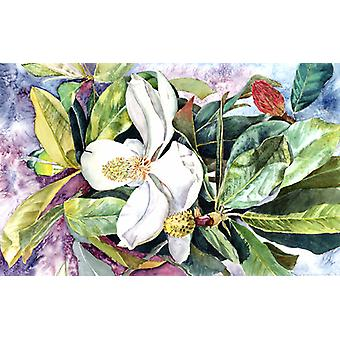 Carolines Treasures  8700PLMT Magnolia Fabric Placemat