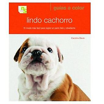 KNS Ediciones Cute Puppy (Dogs , Training Aids , Behaviour)