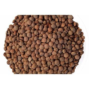 Lenticchie brune biologiche-( 24lb )