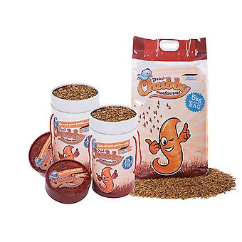 8kg dried chubby mealworms tub combo