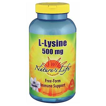 Nature's Life L-Lysine, 500 mg, 250 caps