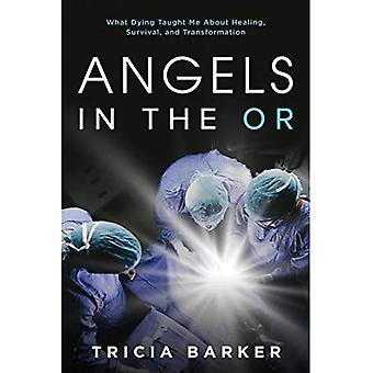 Engelen in de OR: Wat Dying Me geleerd over genezing, overleving en transformatie