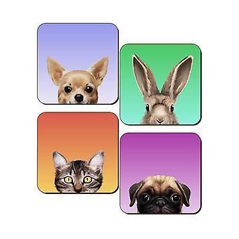 Inquisitive Creatures Pets Coaster Set (Pack of 4)