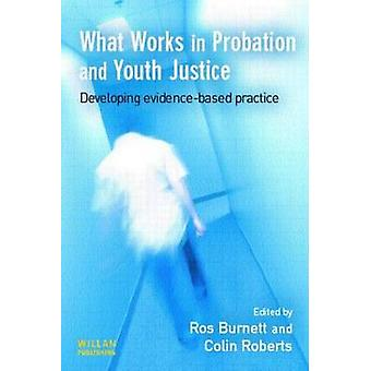 What Works in Probation and Youth Justice Developing Evidencebased Practice