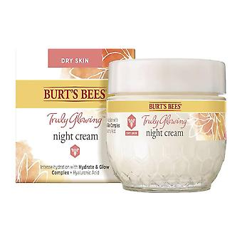 Burt's bees truly glowing night face cream for dry skin, 1.8 oz