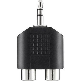 Belkin Jack / RCA Audio/phono Y adapter [1x Jack plug 3.5 mm - 2x RCA socket (phono)] Black