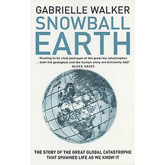 Snowball Earth (New edition) by Gabrielle Walker - 9780747568506 Book