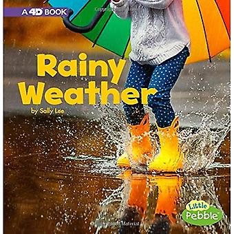 Rainy Weather: A 4D Book (All Kinds of Weather)
