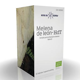 Hifas Da Terra Mico Leo Melena de Leon Hdt 62 capsules