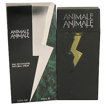 Animale Animale Eau De Toilette Spray By Animale 6.7 oz Eau De Toilette Spray