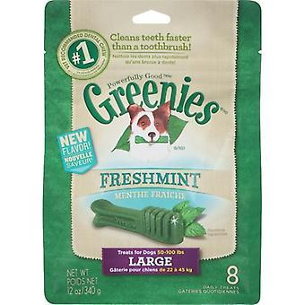 Greenies große MINT Treat Pack 340gm