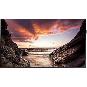 """Samsung PM32F 32"""" LED LFD 5000:1 400cd/m2 1920 x 1080 DVI-I HDMI DisplayPort"""