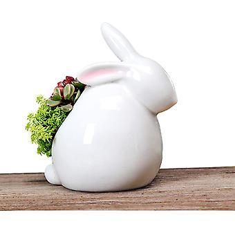 Süße Kaninchenform Keramik Sukkulente Pflanze Topf Behälter GartenBlume Deko