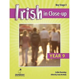 Irish in Close-Up: Key Stage 3 Year 9