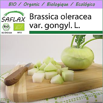 Saflax - 20 seeds - Organic - Turnip - Super Melt - BIO - Chou-rave - Superschmelz - BIO - Cavolo rapa - Superschmelz - Ecológico - Col silvestre - BIO - Kohlrabi - Superschmelz