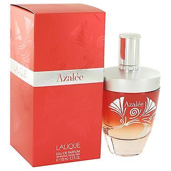 Lalique azalee eau de parfum spray by lalique 517435 100 ml