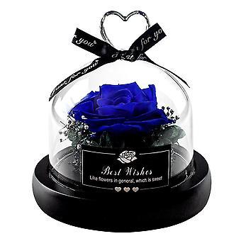 Mała Róża Wieczności - Niebieski