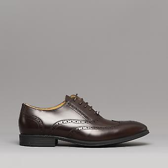Steptronic Finchley Mens Leather Brogue Shoes Brown