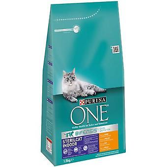 Один стерилизуется в помещении (кошки, корм для кошек, сухой корм)